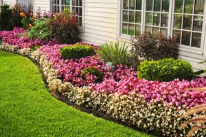 Landscaping to avoid a flooded basement